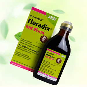 Salus Floradix 铁元补铁补血营养液 500ml