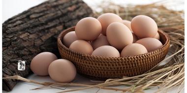 百年栗园 有机初产蛋 40枚/箱 *2箱 (买一送一)