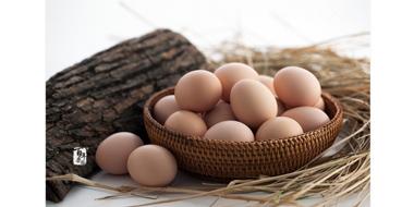 多重优惠,白菜!百年栗园 有机初产蛋 40枚/箱