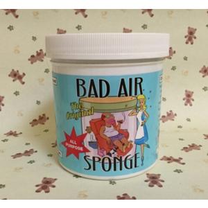 Bad Air Sponge 甲醛污染空气净化剂400g