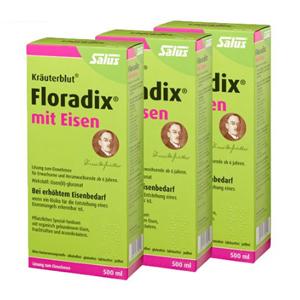 Salus Floradix铁元 补铁补血 女性孕妇圣品 500ml*3