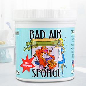Bad Air Sponge空气净化剂 400g