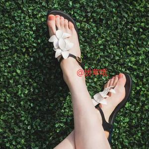 Melissa梅丽莎 Solar Garden II AD 女款夹趾凉鞋