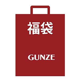 GUNZE 2017年福袋压力袜 4双 两款可选
