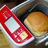 Panasonic 松下 SD-BH1001 家用面包机