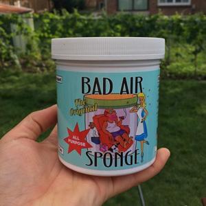 预售!Bad Air Sponge空气净化剂 400g*10罐装