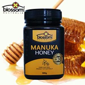 Blossom Health 麦卢卡蜂蜜+30 MGO(活性5+)500克