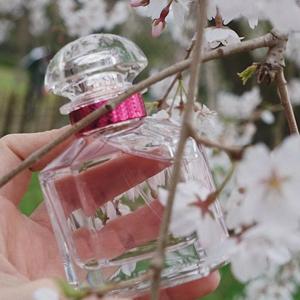 GUERLAIN娇兰 玫瑰绽放 女士淡香水 礼盒套装