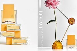 香水|Loewe释出全新Solo Ella淡香水