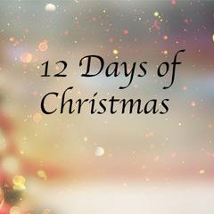 圣诞十二日促销