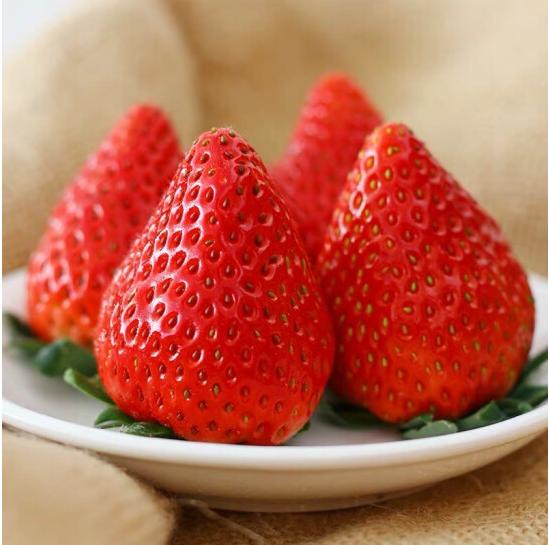 60元包邮!丹东特产 99红颜奶油草莓 大果2斤