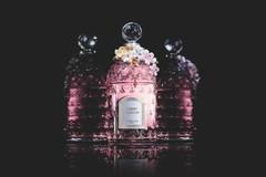 新香 | Guerlain CHERRY BLOSSOM 香水 2月初上架