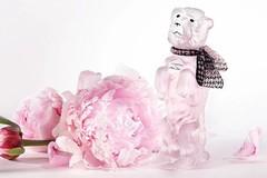 新香 | Dior Miss Dior Blooming Bouquet——Bobby限量版