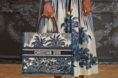 Dior 棕榈树主题2021夏季系列