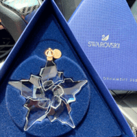 Swarovski 施华洛世奇ANNUAL EDITION 2021限定版星星雪花挂件 5557796